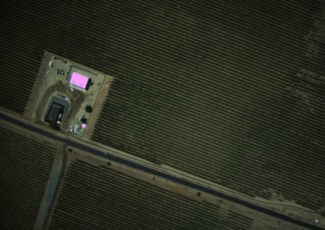 Aerial view of a vineyard surveyed. Image captured with Lumenera Lt965RC (color).