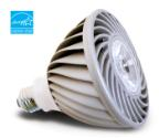 DEFINITY PAR38 LED Light