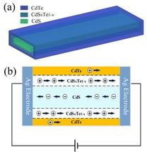 CdS-Based Nanobelt Photodetector Possesses Higher Sensitivity and Fastest Response Speed