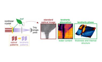 New Terahertz Camera Visualizes Interior of Objects with High Resolution